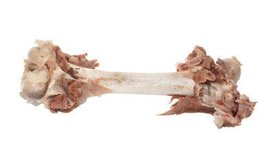 Bone with meat