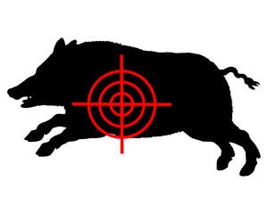 Wildschwein Fadenkreuz