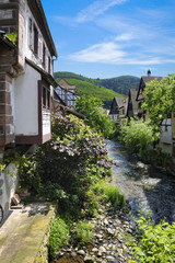 Typical houses bordering the river Weiss in Kaysersberg
