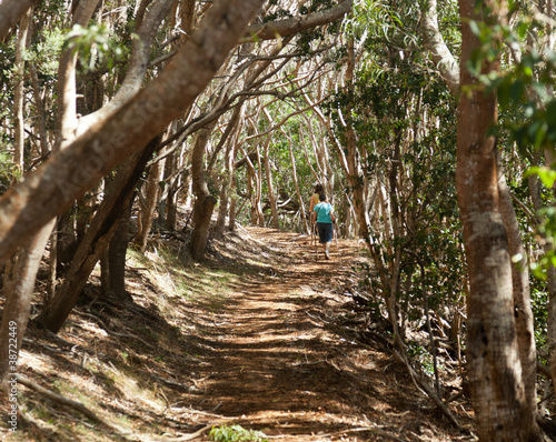 Women hiking through woods in Kauai