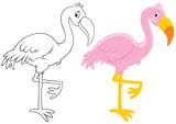 Fototapety Pink flamingo