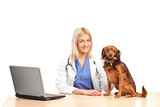 Smiling female veterinarian with a puppy in her office