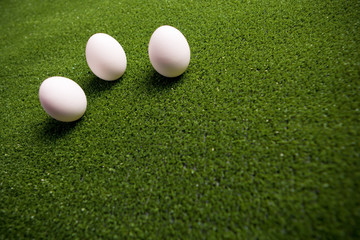 group of eggs on the green lawn