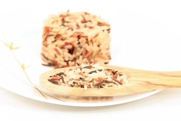 Reiscup (roh und gekocht)