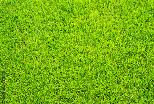 fussball rasen soccer grass von doc rabe media lizenzfreies foto 38735241 auf. Black Bedroom Furniture Sets. Home Design Ideas
