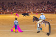 Matador and bull in bullfighting at Madrid
