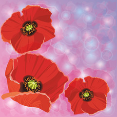 Greeting or invitation cards with red poppies