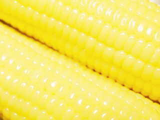 Close up to fresh corn