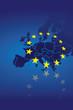 Europa Flagge Fahne 1