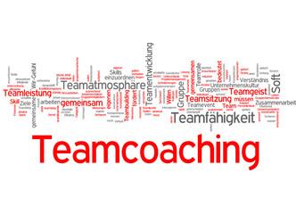 Teamcoaching (Coaching, Team, Teamentwicklung)