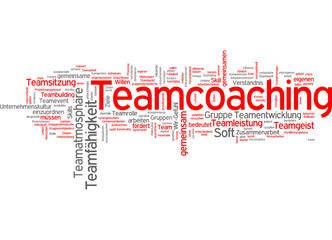 Teamcoaching (Team, Coaching)