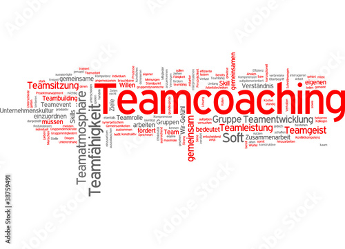 Teamcoaching (Team, Coaching)