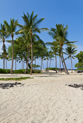 Resort Beach in Hawaii