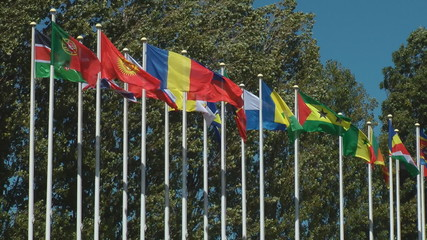 Flags of countries waving