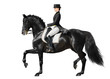 Dressage - black horse and woman - 38794427