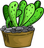 illustration cactus