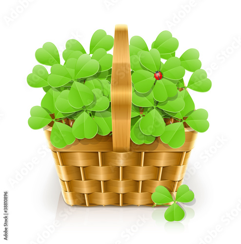 basket with clover vector illustration isolated on white