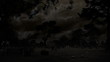 Spooky Cemetery Night & Lightning (HD)