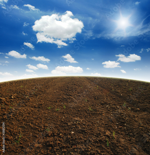 Soil Background mud