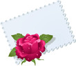 Lace napkin and rose
