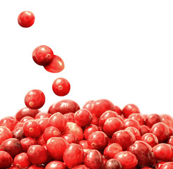 Fresh raw cranberries