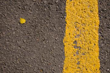 Asphalt closeup yellow road mark small birch leaf