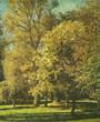 retro forest print