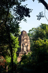 A Top of an accient Angkor