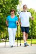 senior couple making nordic walking