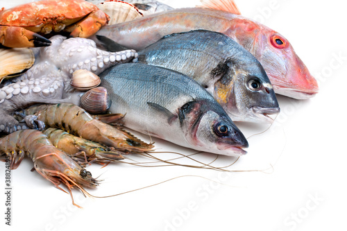 Fresh catch of fish and other seafood