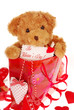 teddy bear in gift bag for valentine