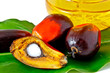 palm fruits and plam olein oil - 38827252