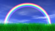 Rainbow, Grass & Peaceful Sky