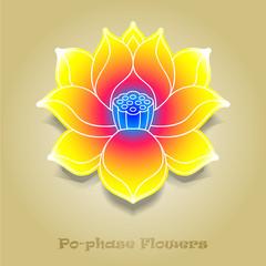 chinese virtual po-phase flowers: lotus,Paeonia suffruticosa, ch
