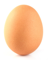 One egg in closeup