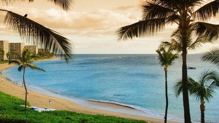 Tropical Beach Resort Paradise (Time-lapse)