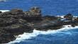 Rocky Pacific Coast (Maui, Hawaii)