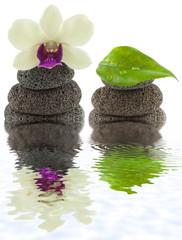 décor zen, minéral, floral, végétal