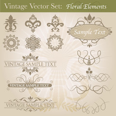Vintage Vector Set - Floral Elements