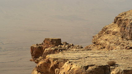 Stock Video Footage of a bird hopping on a cliff edge shot in Israel at 4k with Red.