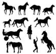chevaux en silhouettes noires