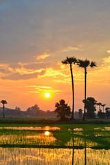 Beautiful Sunset Of Thailand