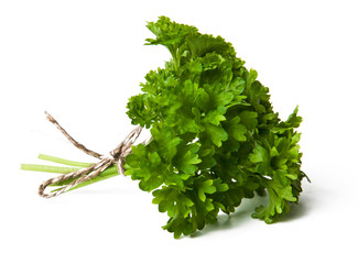 Fresh parsley bouquet on pure white background