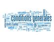 "Nuage de Tags ""CONDITIONS GENERALES"" (utilisation vente bouton)"