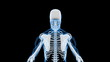 X-Ray Scan of Human Skeleton (HD)