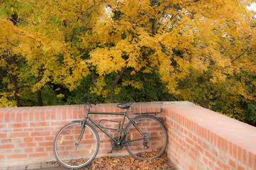 Vergessenes Fahrrad