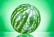 Single whole watermelon on a green background