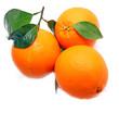 Oranges feuille
