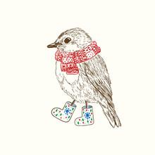 Penna och bläck illustration av fågel i halsduk