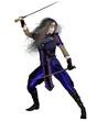 Fantasy Warrior Princess Fighting